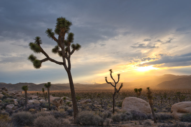 A sunset settles over the start of the Hidden Valley Nature Trail. Photo credit: NPS/Brad Sutton.