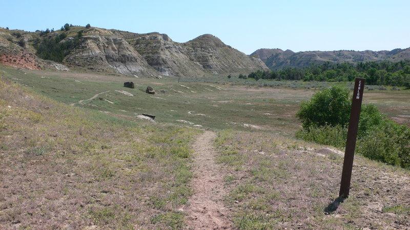 A marker post designates the Ekblom Trail.