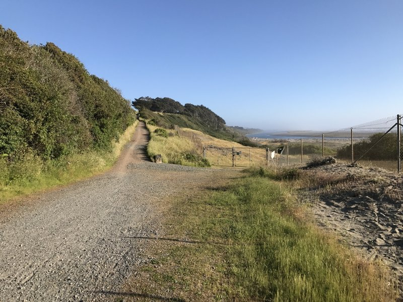 Hammond Trail near Highway 101 south of Clam Beach.
