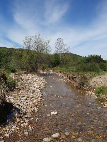 This is the main stream in Spring Canyon.