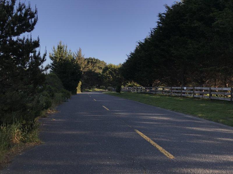 Letz Avenue section of Hammond Trail in northern McKinleyville.