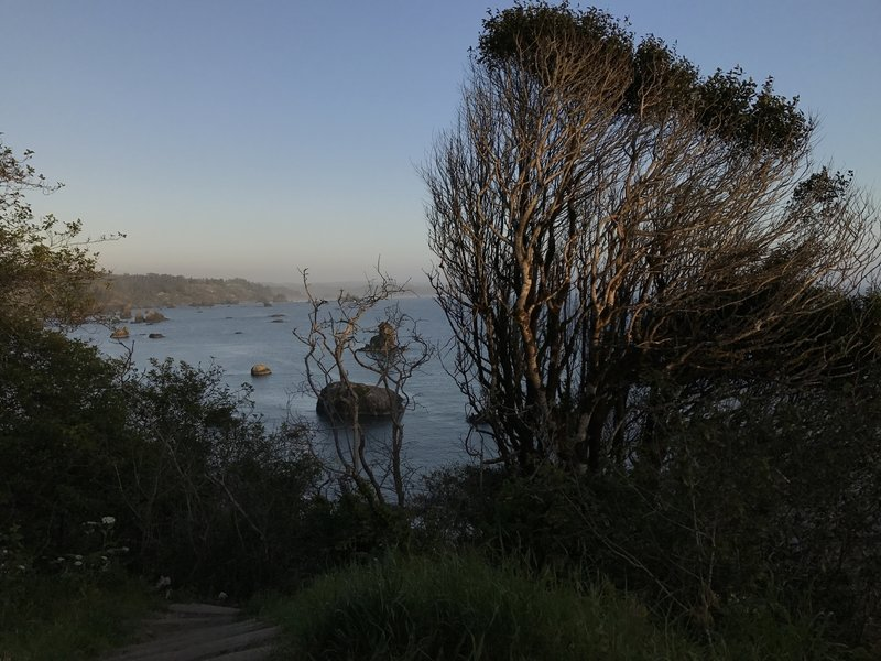 View of central Humboldt coast from the Old Home Beach Trail.