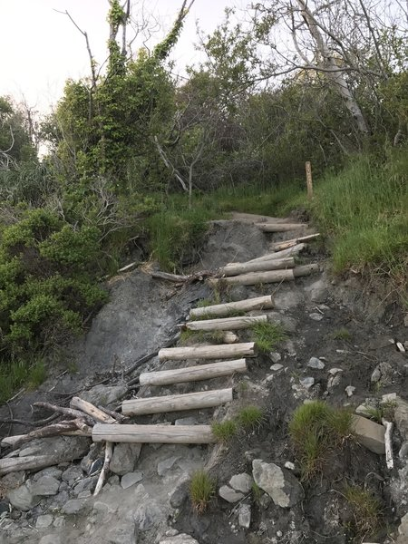 The less substantial steps to the beach can be muddy and steep.
