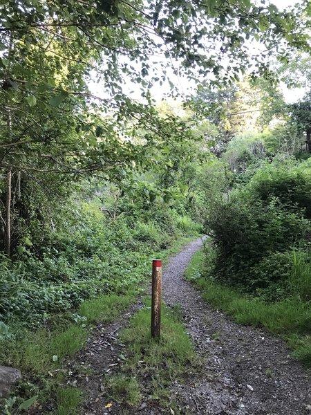 The Parker Creek trailhead.