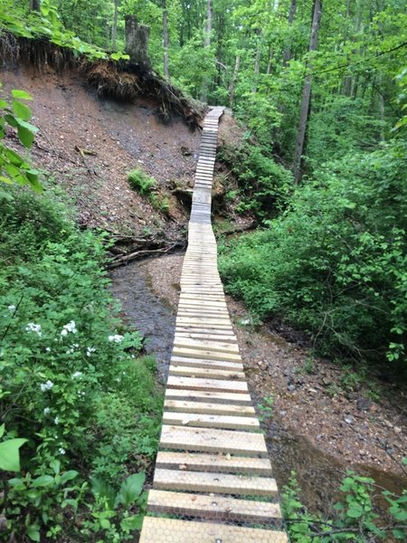 This very sturdy creek crossing was probably meant for mountain bikes originally, but it's equally fun on foot.