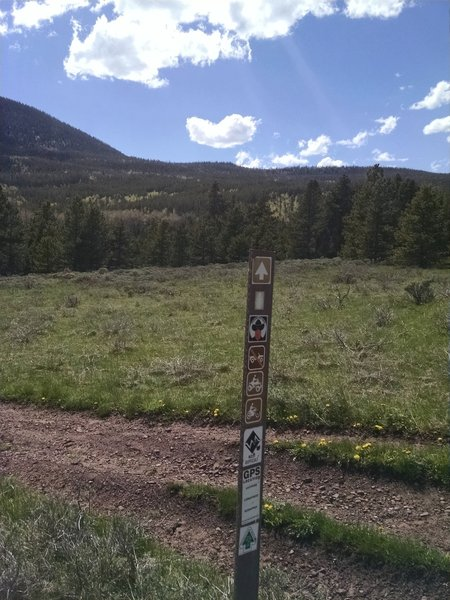This is the first trail marker past the parking area. The trail will eventually pass through the saddle located directly above the post.