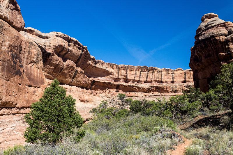 Collins Canyon touts beautiful sandstone walls.