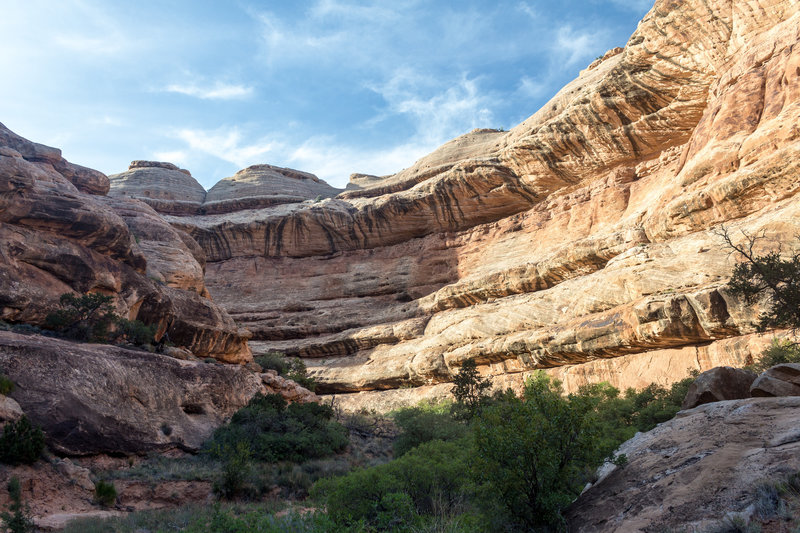 Domes of the Navajo Sandstone peek out from behind the canyon walls.