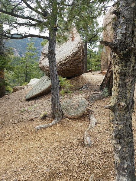 The Jones Park Trail #667 is rife with interesting rock outcroppings.