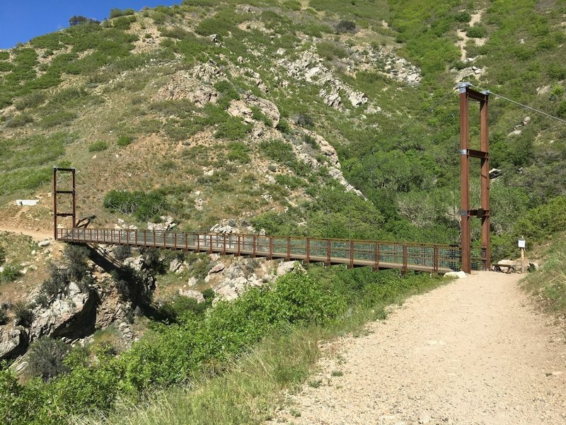 Bear Canyon Suspension Bridge is fun to cross and a great reminder of how much effort goes into building and maintaining trails!