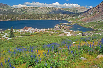 Hiking Trails near Emigrant Wilderness