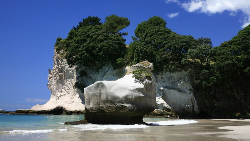 The white limestone cliffs of Cathedral Cove have been wave-sculpted into beautiful natural artwork.