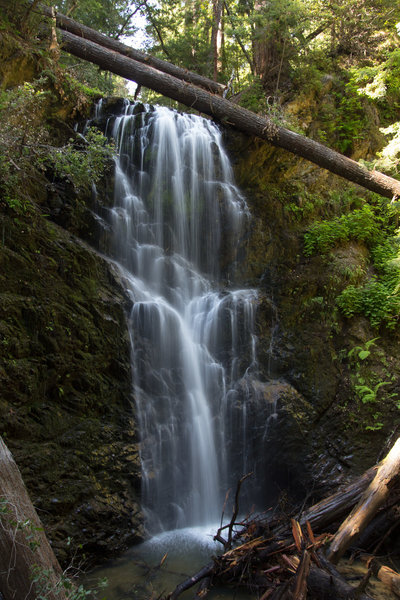 Berry Creek Falls is absolutely stunning in the spring.