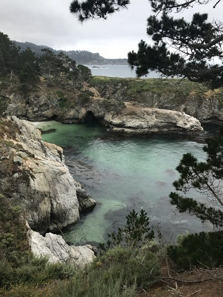 China Cove provides pleasant shelter from the brisk coastal winds.