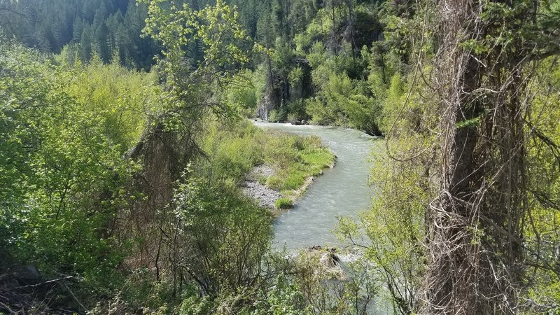 The trail offers plenty of beautiful views of the creek.