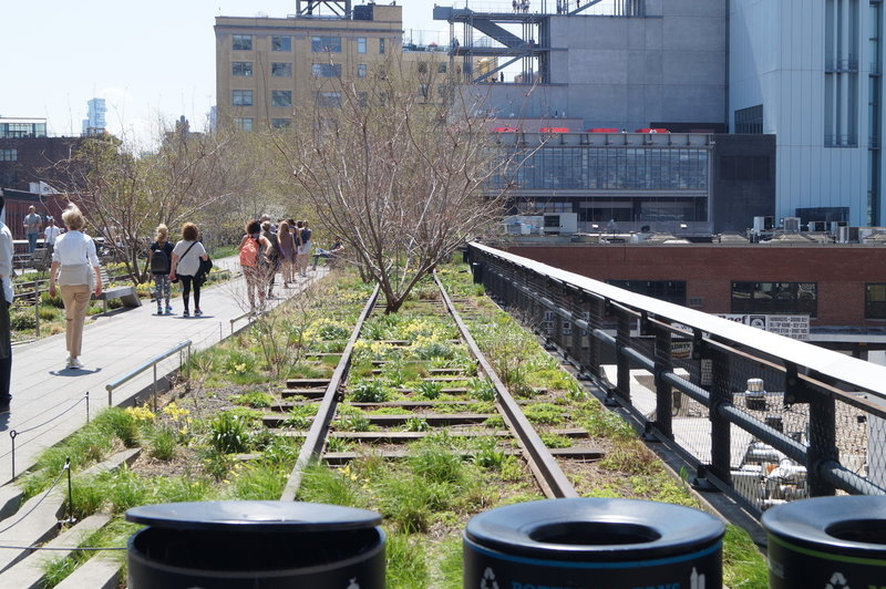 The old High Line rail tracks are a great day activity if you're in Manhattan.