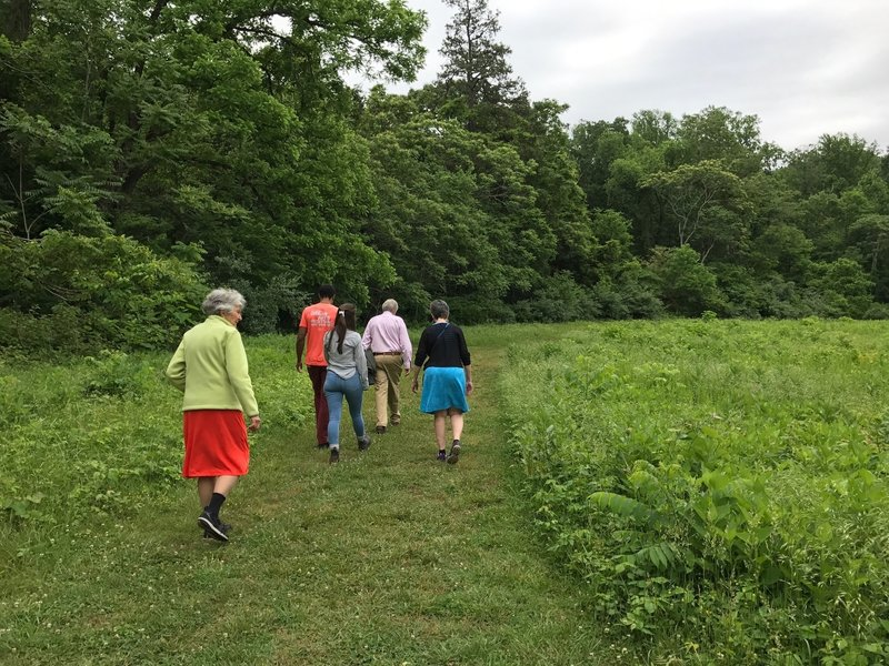 The group breaks out of the trees onto the Upper Meadow Trail along the wide, mowed path. Look out for poison ivy!