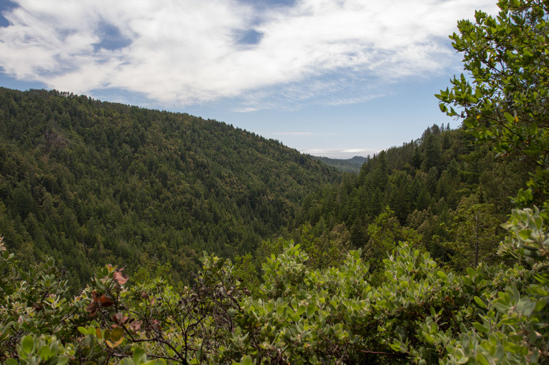 Overlook from the Howard King Trail.