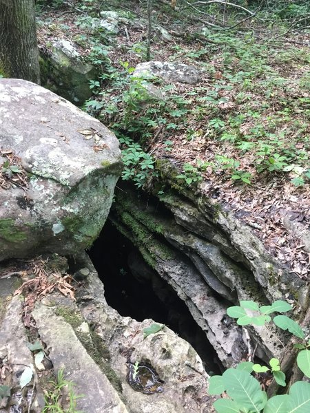 Keep your eyes peeled for underground caves in the limestone along the Lost Sinks Trail.