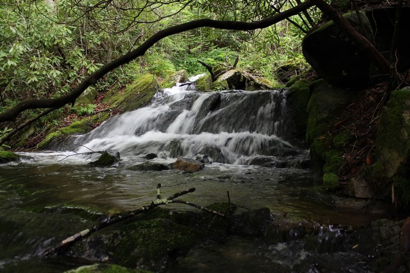 Flat Creek Falls –While absolutely beautiful, it's semi-difficult to get to.