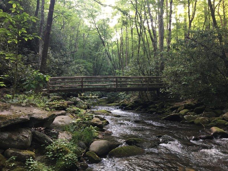 Just past Camp 64, enjoy this great log bridge.