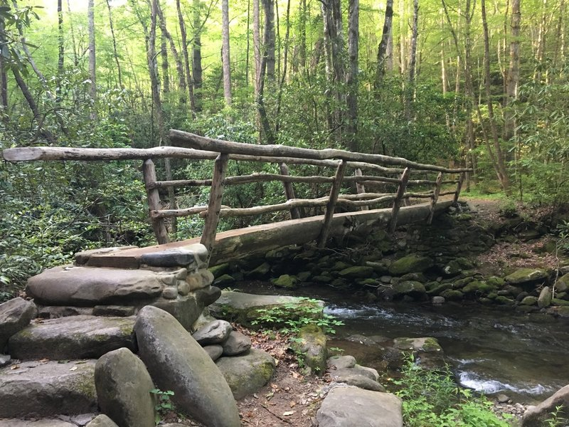 This is the footbridge just past camp 64 on Noland Creek Trail.