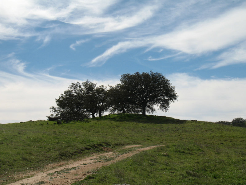 A whimsical sky in Santa Ysabel West Preserve improves the already pleasant scenery.