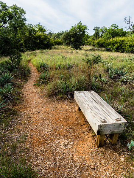 Several benches along the Canyon Ridge Trail let you rest while you soak it all in.