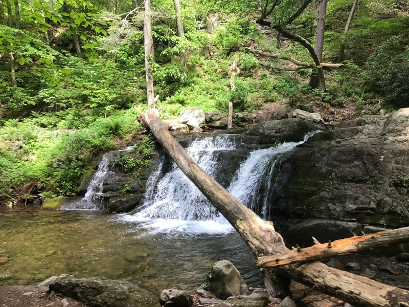 Enjoy a small waterfall on the Dunnfield Creek Trail.