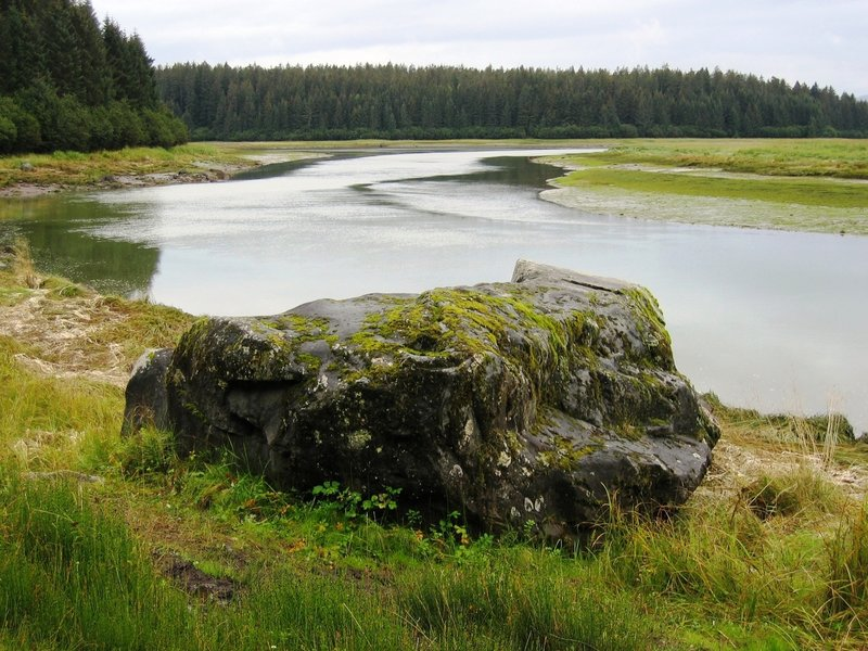 Erratics left over from receded glaciers dot the landscape next to the Bartlett River. Photo credit: NPS Photo.