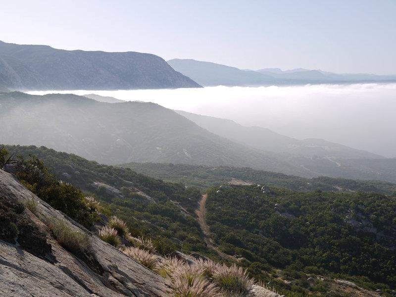 Early morning fog enshrouds the El Cajon Mountain Trail.