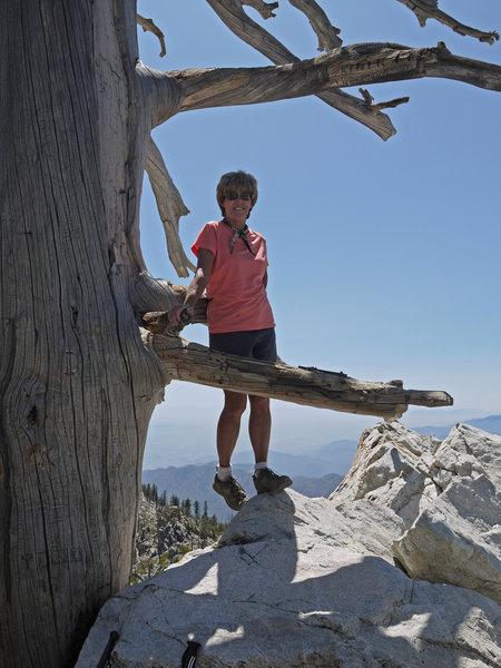 A hiker hangs out at Ontario Peak.
