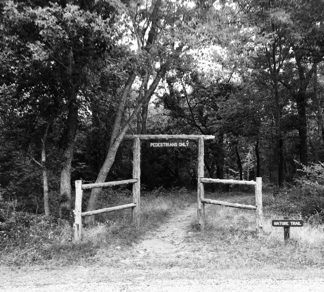 Armadillo Hill Trailhead is marked by this entry arch.