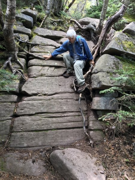 The Wittenberg Cornell Slide Trail is only for the brave and sure-footed!