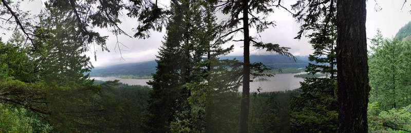 This panorama faces north toward the Columbia River (from the not recommended spur trail to the viewpoint).