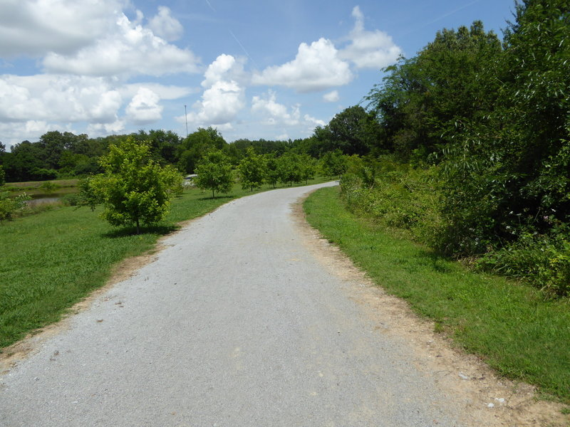 The wide, sunlit path that makes up Trotting Fox Trail.