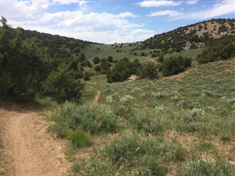 The Johnny Draw trail winds through sagebrush and juniper on the eastern side of the loop.