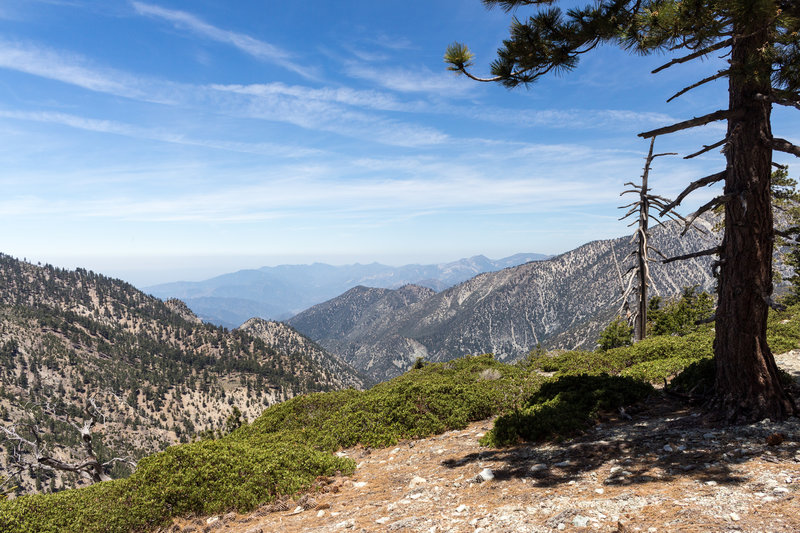 Looking west over Ice House Canyon before descending from Timber Mountain