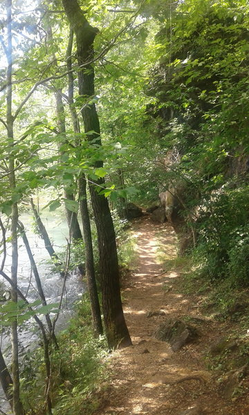The trail follows along Spring Branch.