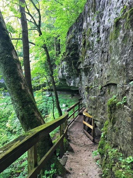 The Cedar Sinks Trail explores interesting rock formations and crevices.
