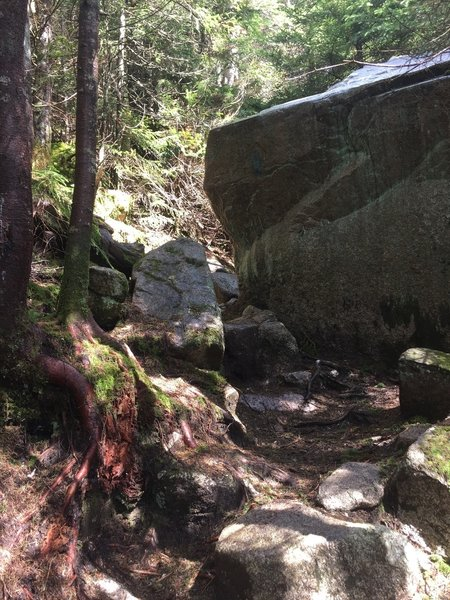 Rock continues to be a major factor on the Hi-Cannon Trail.