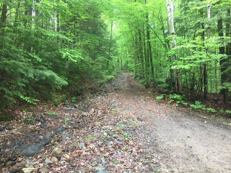 The doubletrack up to Peaked Hill Pond follows a steady grade.