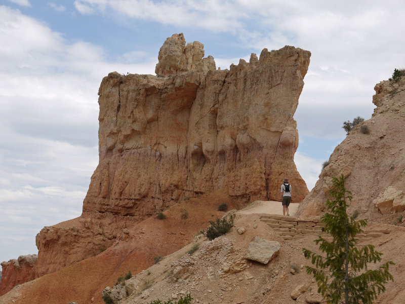 The rock fins on the Peekaboo loop tower over visitors.