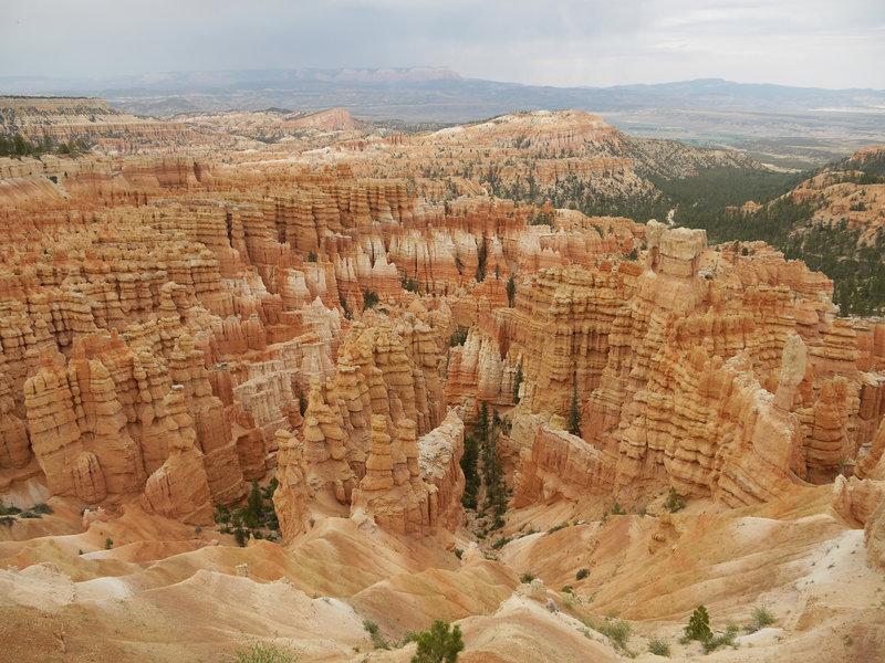 Hoodoos as far as the eye can see at Bryce Canyon.