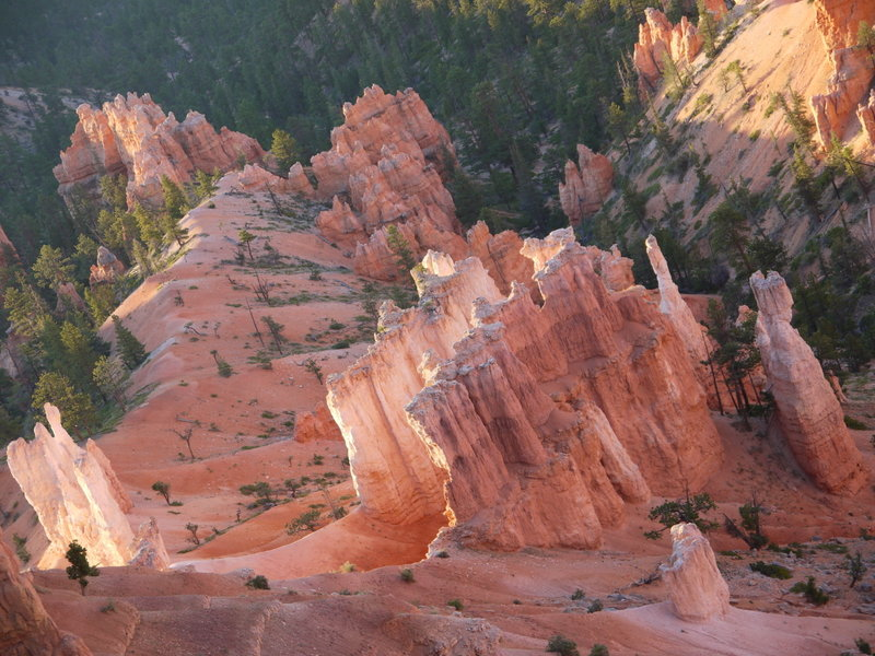Bryce Canyon rock fins glowing in early morning sunlight.