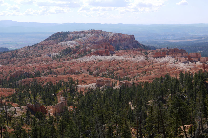Bristlecone Point, viewed from along the Fairyland loop at Bryce Canyon NP