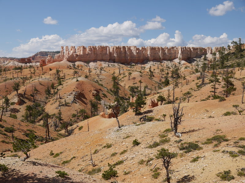 Rock formation near the Fairyland loop at Bryce Canyon National Park.