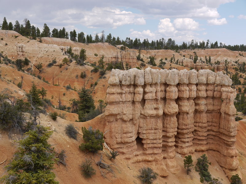 A hoodoo wall formation along the Fairyland Loop Trail.
