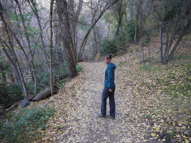 Heading up the Mueller Park trail in late autumn.