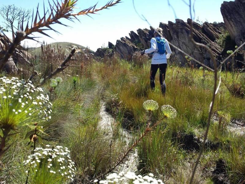 Rocky gardens provide a fun running environment.